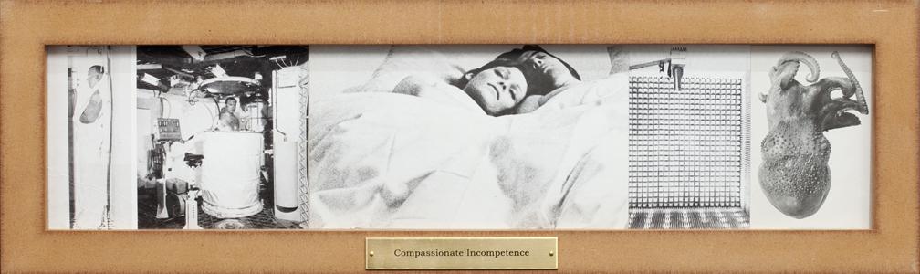 http://jorgenmichaelsen.net/files/gimgs/89_89mg9584.jpg